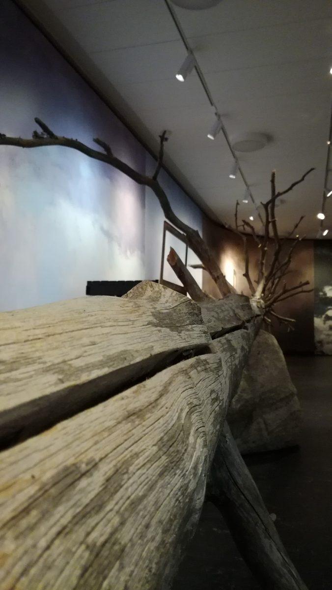 Kelo Maisema-näyttelyssä